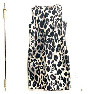 Ann Taylor Leopard Dress